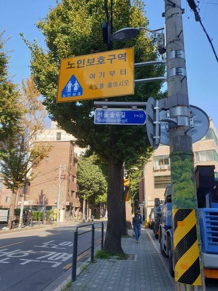 노인보호구역에선 운전자가 운행속도를 줄여야 한다.