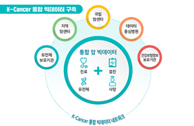 K-Cancer 통합 빅데이터 구축 방향