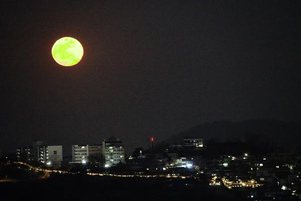 서울시 종로구 낙산 위로 녹색과 흰색을 띤 대보름달이 떠오르고 있다.