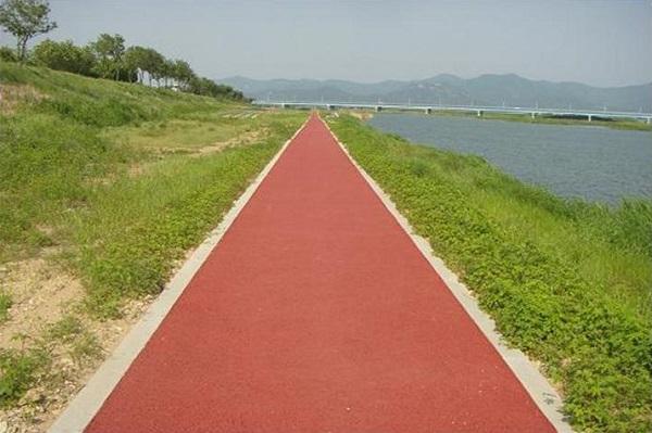 합동조사 대상인 고수부지 내 위치한 자전거도로, 체육시설, 주차장, 천변도로.