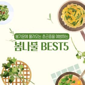 봄기운에 몰려오는 춘곤증을 예방하는 봄 산나물 Best5