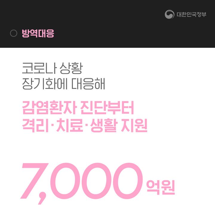 방역대응(7000억원)