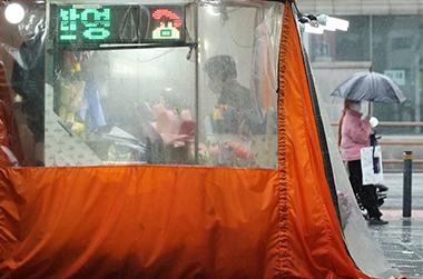 서울 종로구 관철동 젊음의 거리에서 꽃집을 운영하는 한 노점상이 비가 오는 가운데 영업을 준비하고 있다.
