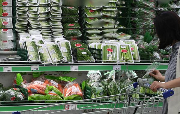 4월 소비자물가가 2.3% 오르며 3년 8개월만에 최대 상승 폭을 기록했다. 사진은 서울의 한 대형마트 채소 판매대에서 시민이 채소를 고르고 있는 모습. (사진=저작권자(c) 연합뉴스, 무단 전재-재배포 금지)