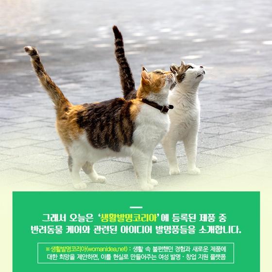 '생활발명코리아'(https://womanidea.net)에 등록된 발명품 중 반려동물케어 를 위한 아이디어 제품, 신박한 발명품들을 소개합니다