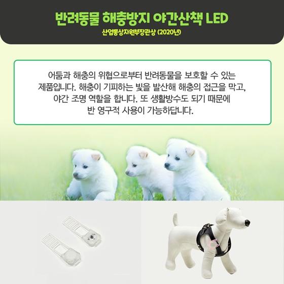 반려동물 해충방지 야간산책 LED