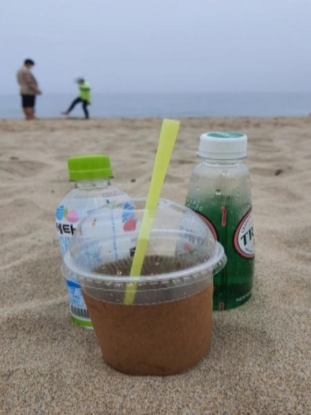 바닷가에 버려진 플라스틱 음료수, 해안 쓰레기 중 플라스틱이 83.4%를 차지한다.
