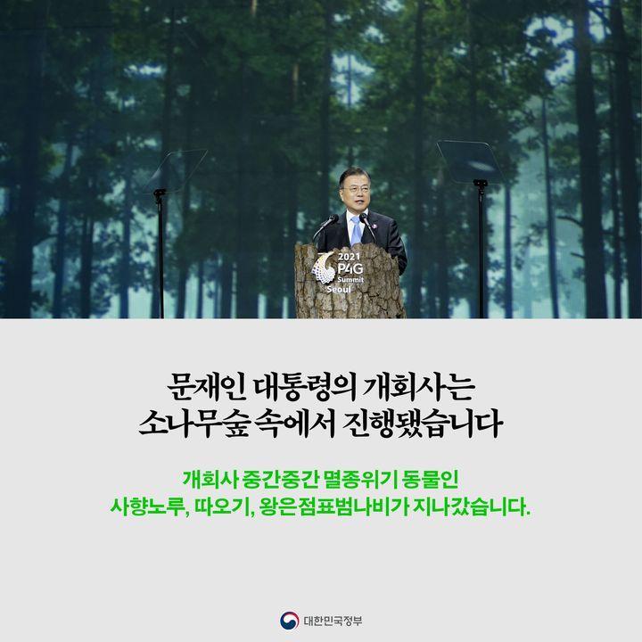 문재인 대통령의 개회사는 소나무숲 속에서 진행됐습니다