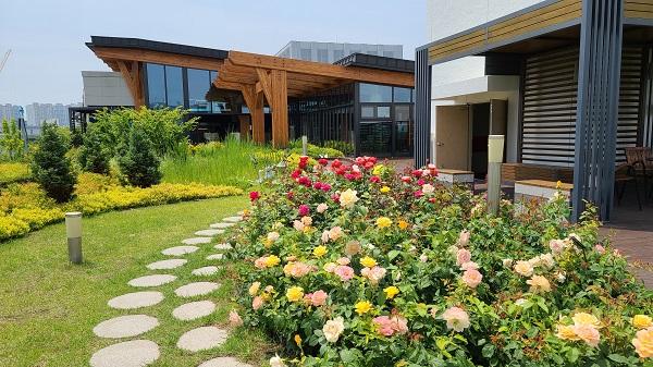 공공건물 옥상에 옥상정원이 생겨서 직원과 민원인들의 만족도가 높다.
