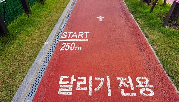 달리기를 배워볼까. 달리고 싶다.