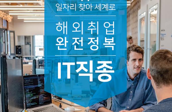 해외취업 완전정복 IT 직종 표지 이미지.