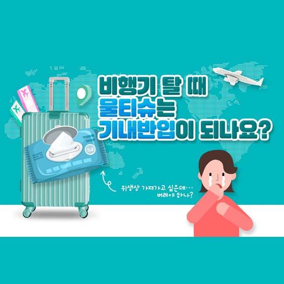 비행기 탈 때 물티슈는 기내반입이 되나요?