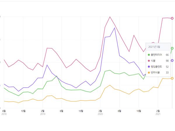 증가하고 있는 반려식물 관련 검색량 (출처=네이버 데이터랩)