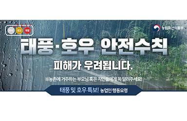 태풍·호우 안전수칙
