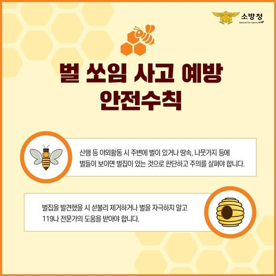 벌 쏘임 사고 예방 안전수칙