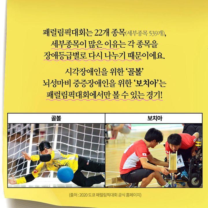 패럴림픽대회는 22개 종목(세부종목 539개)