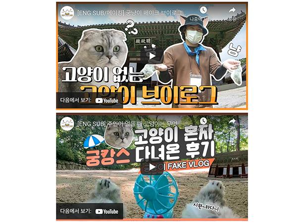 '고양이 혼자 창경궁 다녀온 썰' 영상(아래)과 메이킹 영상 썸네일.