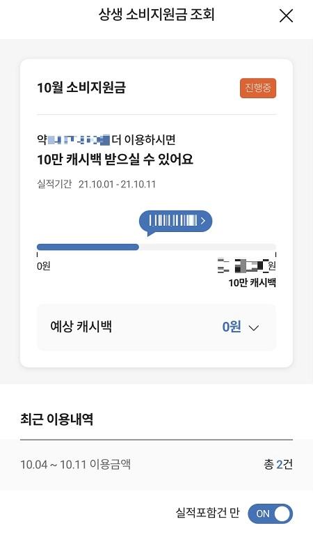신청한 카드사의 앱으로 상생소비지원금과 관련한 각종 정보를 조회할 수 있다.