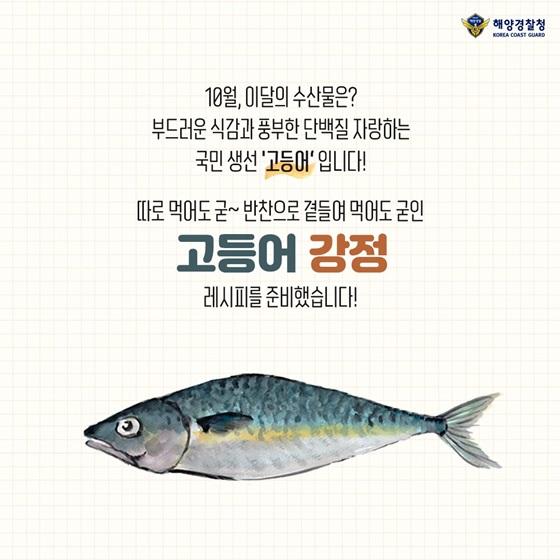10월, 이달의 수산물은? 부드러운 식감과 풍부한 단백질 자랑하는 국민 생선 '고등어'입니다!