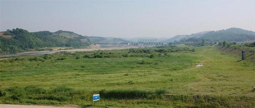 임진강 북삼교 부근 하천습지 전경.