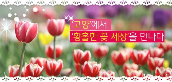 '고양'에서 '황홀한 꽃 세상'을 만나다