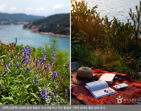 [왼쪽/오른쪽]300여 종의 꽃들이 사시사철 피고 지는 별정원 / 혼자 보내도 좋은 섬의 휴식