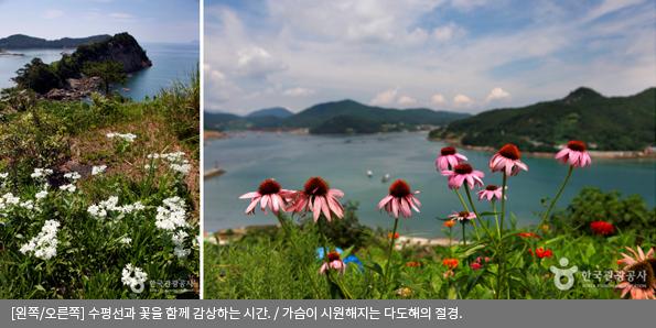 [왼쪽/오른쪽]수평선과 꽃을 함께 감상하는 시간 / 가슴이 시원해지는 다도해의 절경
