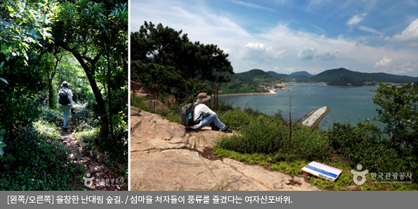 [왼쪽/오른쪽]울창한 난대림 숲길 / 섬마을 처자들이 풍류를 즐겼다는 여자산포바위