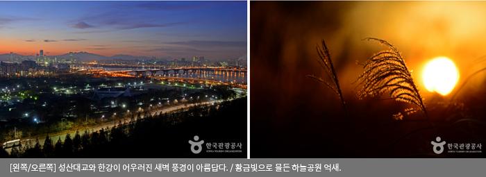 [왼쪽/오른쪽]성산대교와 한강이 어우러진 새벽 풍경이 아름답다 / 황금빛으로 물든 하늘공원 억새