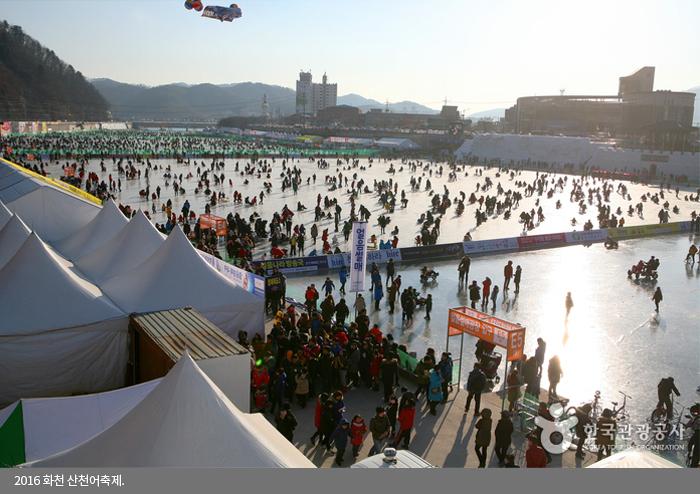 2016 화천 산천어축제