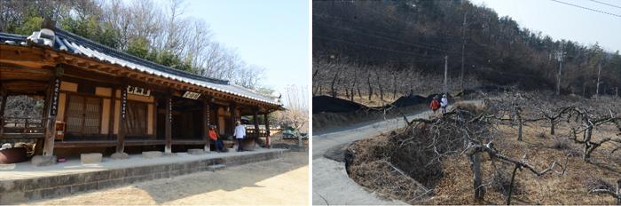 대구올레(팔공산 올레길) 4코스 평광동 왕건길 (대구 동구)