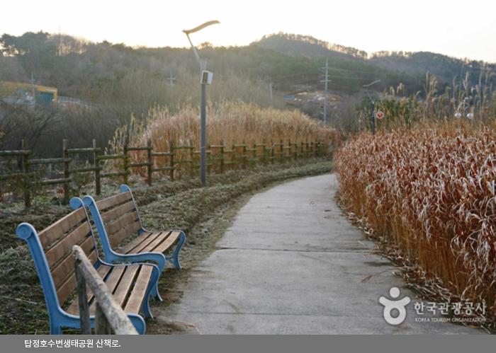 탑정호수변생태공원 산책로