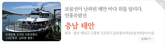 보물선이 난파된 태안 바다 위를 달리다, 안흥유람선 - 충남 태안