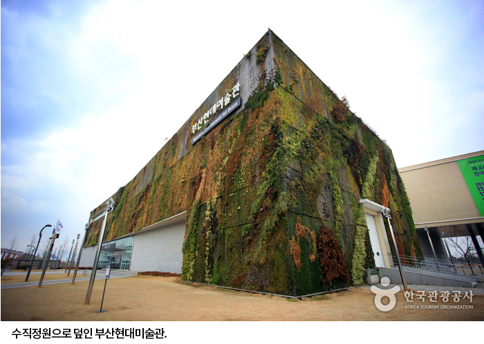 수직정원으로 덮인 부산현대미술관