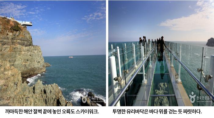 까마득한 해안 절벽 끝에 놓인 오륙도 스카이워크, 투명한 유리바닥은 바다 위를 걷는 듯 짜릿하다.