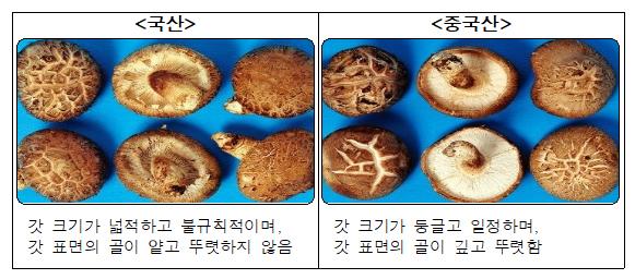 표고버섯.