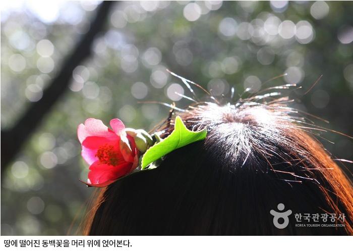 땅에 떨어진 동백꽃을 머리 위에 얹어본다.