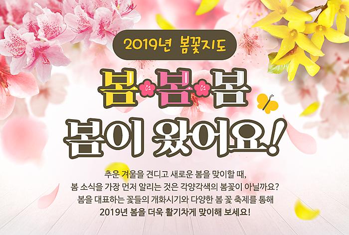 2019년 봄꽃지도