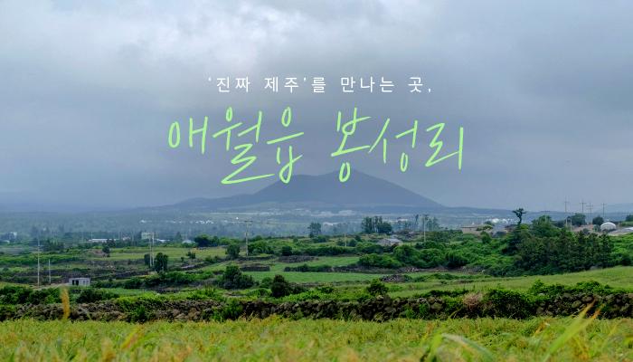 '진짜 제주'를 만나는 곳, 애월읍 봉성리