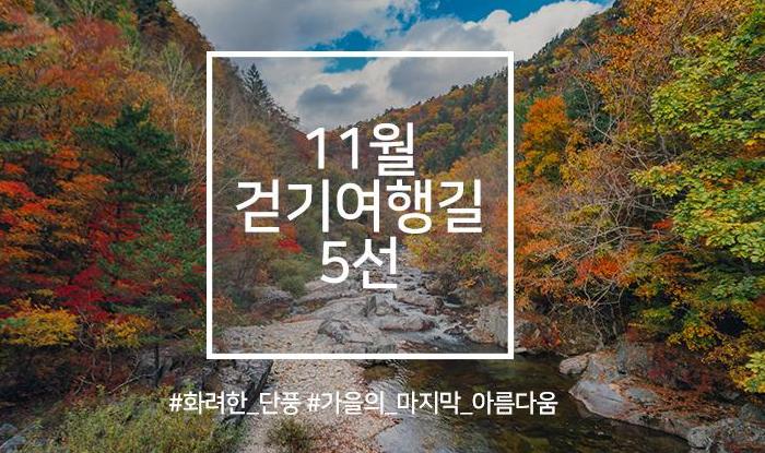 11월 걷기여행길 5선, 영화·드라마 속 걷기여행길