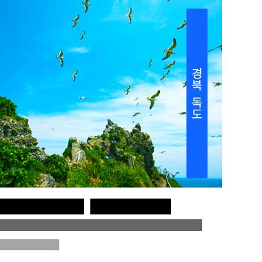 경북 독도 - 푸른 바다 위 갈매기 천국 #독도수호대 #물반 갈매기반 #새우깡 러쉬, 깅용배/CC BY