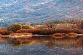 운곡 람사르