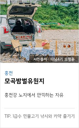 홍천 모곡밤별 유원지 홍천강 노지에서 만기하는 자유 tip. 1급수 민물고기 낚시와 가약 즐기기