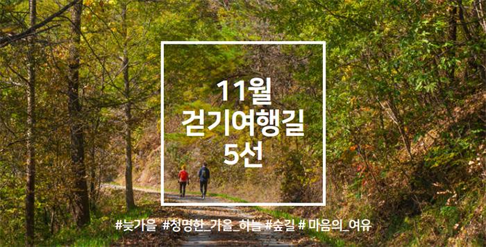 11월 걷기여행길 5선, '늦가을의 정취를 느끼며 걷는 길'