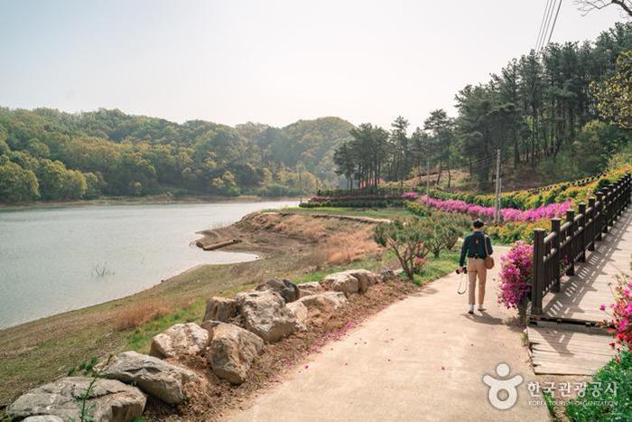 강을 따라 보이는 봄의 부소담악 - 한국관광공사