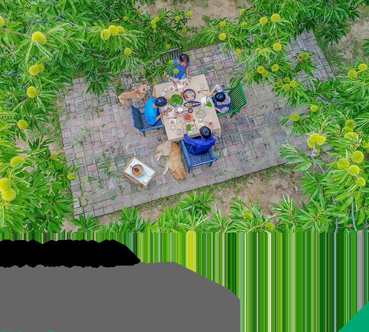 충주 | 스페이션 - 사람과 자연이 공존하는 공간 자연 그대로의 촌(村)스러운 라이프 스타일