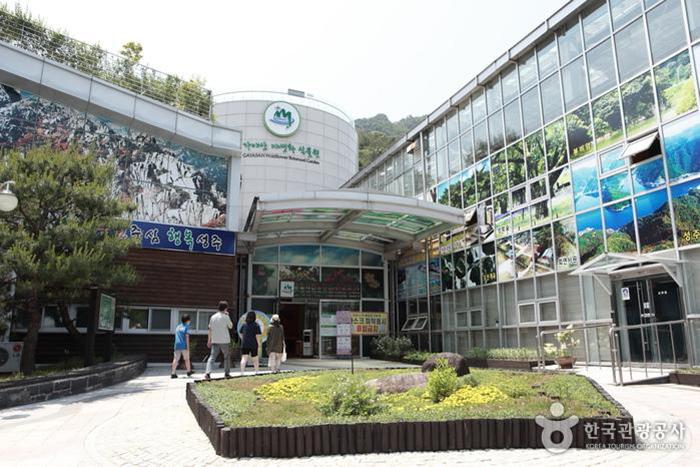 가야산국립공원 백운동탐방지원센터 아래 자리한 가야산야생화식물원 - 한국관광공사