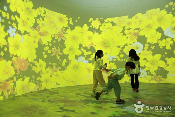 계절 따라 피고 지는 야생화를 디지털 이미지로 표현한 '화우동산' - 한국관광공사