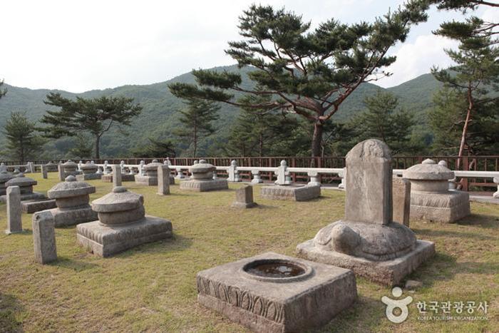 태실 19기가 모여 있는 성주 세종대왕자 태실 - 한국관광공사