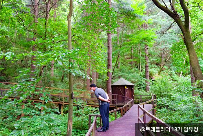 청태산휴양림 데크 산책로에 나무에 걸려있는 글을 보고 있다. @트레블러 13기 임유정